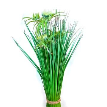 Imagen de Planta Papiro Verde